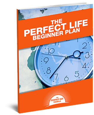 The Perfect Life Beginner Plan - FREE Copy